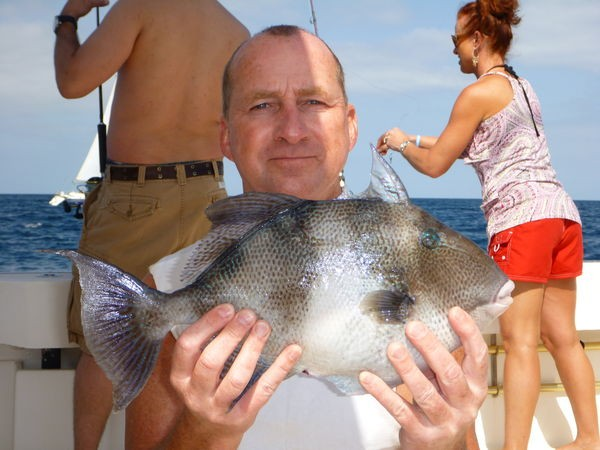 20/04 Trigger fish Cavalier & Blue Marlin Sport Fishing Gran Canaria
