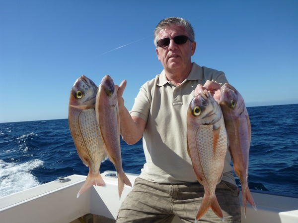 28/01 Red Snappers Cavalier & Blue Marlin Sport Fishing Gran Canaria