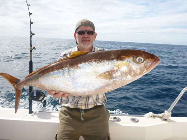 08/03 Amberjack Cavalier & Blue Marlin Sport Fishing Gran Canaria