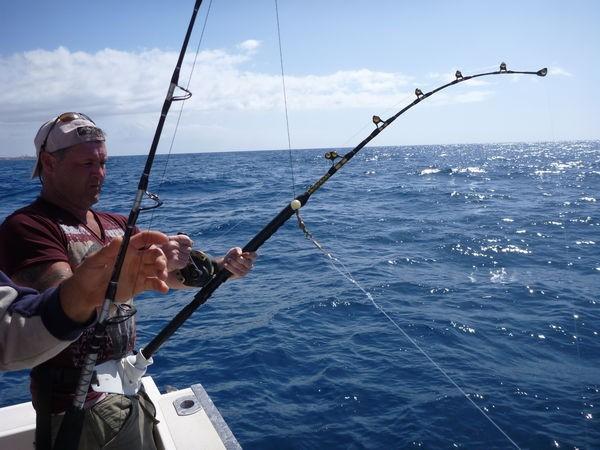 Hooked Cavalier & Blue Marlin Sport Fishing Gran Canaria