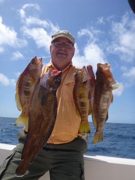 Pez comber Pesca Deportiva Cavalier & Blue Marlin Gran Canaria