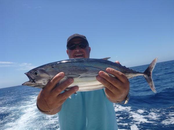 Skipjack tonfisk Cavalier & Blue Marlin Sport Fishing Gran Canaria