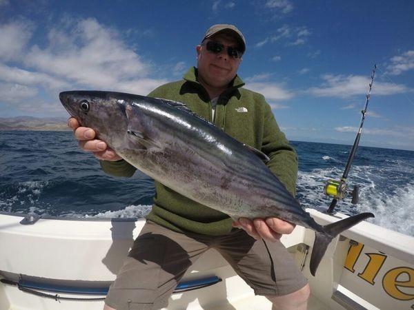 North Atlantic Bonito caught by Jostein Wilmans from Norway Cavalier & Blue Marlin Sport Fishing Gran Canaria