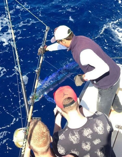 Spearfish released by Harro Mengers from Holland Cavalier & Blue Marlin Sport Fishing Gran Canaria