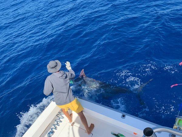 June Photo Archive 2019 Cavalier & Blue Marlin Sport Fishing Gran Canaria