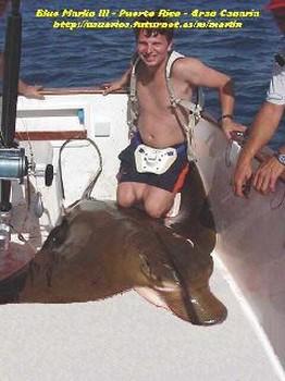 örnstråle Cavalier & Blue Marlin Sport Fishing Gran Canaria