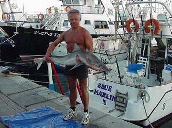 blue shark Cavalier & Blue Marlin Sport Fishing Gran Canaria