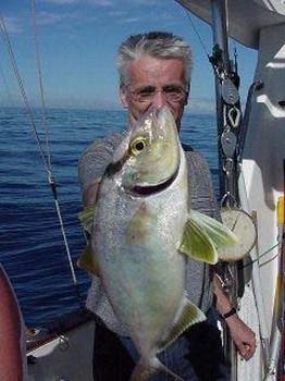 Vadigo Cavalier & Blue Marlin Sport Fishing Gran Canaria