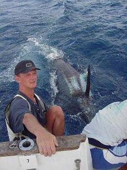 blue marlin Cavalier & Blue Marlin Pesca sportiva Gran Canaria