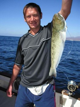steaked weever Cavalier & Blue Marlin Sport Fishing Gran Canaria