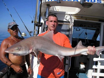 smooth hound Cavalier & Blue Marlin Sport Fishing Gran Canaria