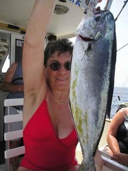 dorado Cavalier & Blue Marlin Sport Fishing Gran Canaria