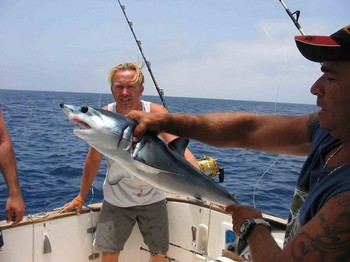 blue shark Cavalier & Blue Marlin Sport Fishing Gran Canaria