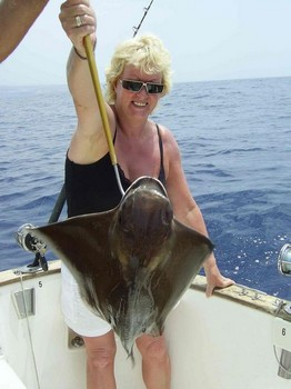 cownose ray Cavalier & Blue Marlin Sport Fishing Gran Canaria