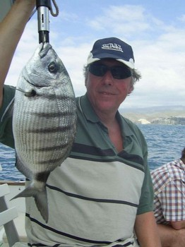 white seabream Cavalier & Blue Marlin Sport Fishing Gran Canaria