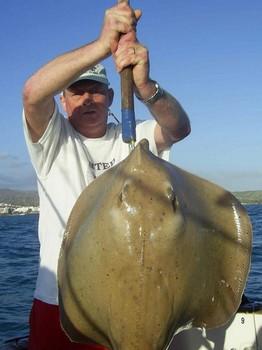 rayo de nariz Pesca Deportiva Cavalier & Blue Marlin Gran Canaria