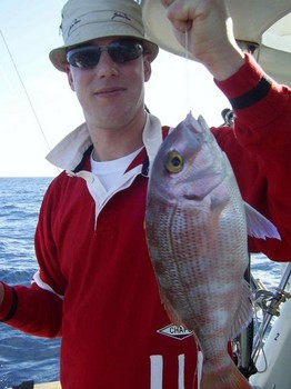 besugo de banda roja Pesca Deportiva Cavalier & Blue Marlin Gran Canaria