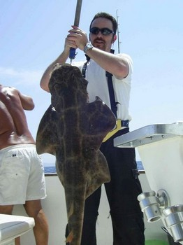 angel shark Cavalier & Blue Marlin Sport Fishing Gran Canaria