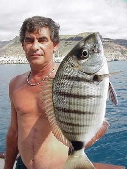 22/01 white seabream Cavalier & Blue Marlin Sport Fishing Gran Canaria