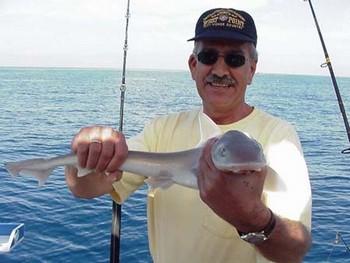 29/01 smooth hound Cavalier & Blue Marlin Sport Fishing Gran Canaria