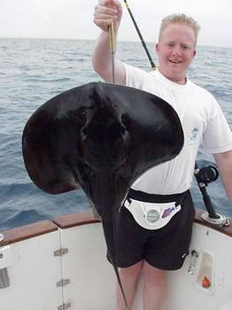 20/02 black stingray Cavalier & Blue Marlin Sport Fishing Gran Canaria