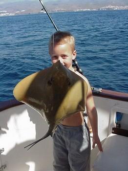 27/02 common stingray Cavalier & Blue Marlin Sport Fishing Gran Canaria