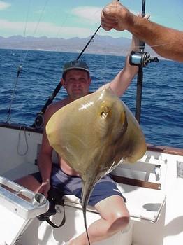 07/03 common stingray Cavalier & Blue Marlin Sport Fishing Gran Canaria