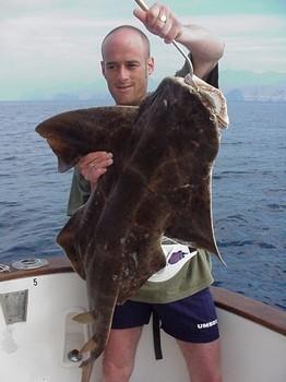 01/04 angel shark Cavalier & Blue Marlin Sport Fishing Gran Canaria