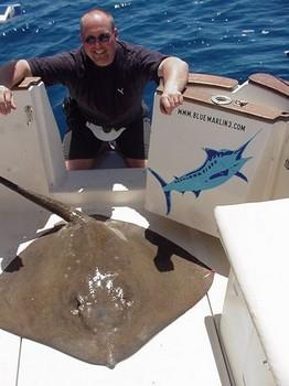 08/04 common stingray Cavalier & Blue Marlin Sport Fishing Gran Canaria
