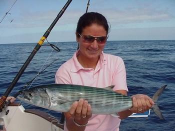19/04 north atlantic bonito Cavalier & Blue Marlin Sport Fishing Gran Canaria