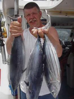 12/07 skipjack tuna Cavalier & Blue Marlin Sport Fishing Gran Canaria