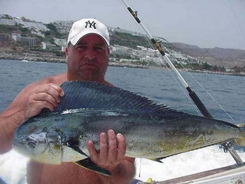 20/07 dorado Cavalier & Blue Marlin Sport Fishing Gran Canaria