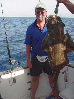03/08 angel shark Cavalier & Blue Marlin Sport Fishing Gran Canaria
