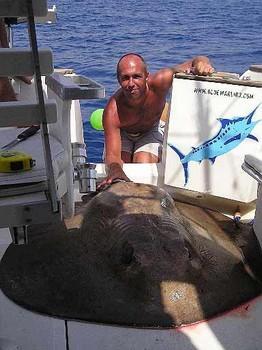 14/09 round stingray Cavalier & Blue Marlin Sport Fishing Gran Canaria
