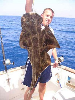 17/09 angel shark Cavalier & Blue Marlin Sport Fishing Gran Canaria