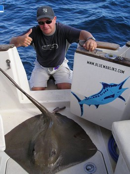 26/10 common stingray Cavalier & Blue Marlin Sport Fishing Gran Canaria