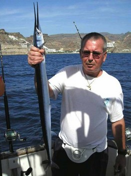 13/11 garpike Cavalier & Blue Marlin Sport Fishing Gran Canaria