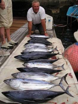 21/11 skipjack tuna Cavalier & Blue Marlin Sport Fishing Gran Canaria