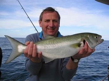 22/01 kingfish Cavalier & Blue Marlin Sport Fishing Gran Canaria