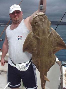 31/01 angelshark Cavalier & Blue Marlin Sport Fishing Gran Canaria
