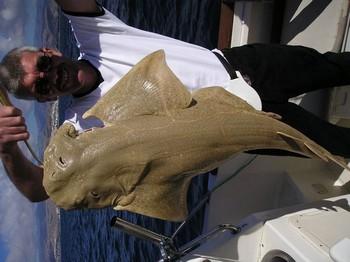 28/01 tope Cavalier & Blue Marlin Sport Fishing Gran Canaria