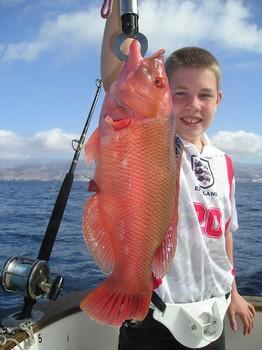 23/02 red hogfish Cavalier & Blue Marlin Sport Fishing Gran Canaria