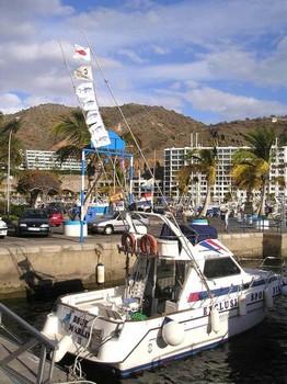29/02 enganchado Pesca Deportiva Cavalier & Blue Marlin Gran Canaria