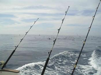 12/03 hooked up Cavalier & Blue Marlin Sport Fishing Gran Canaria