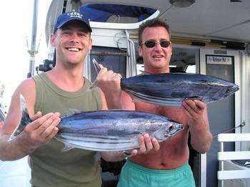 02/05 skipjack tuna Cavalier & Blue Marlin Sport Fishing Gran Canaria