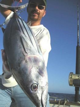 06/08 skipjack tuna Cavalier & Blue Marlin Sport Fishing Gran Canaria