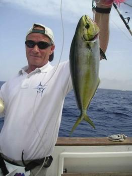 26/08 dorado Cavalier & Blue Marlin Sport Fishing Gran Canaria