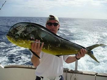 12/11 dorado Cavalier & Blue Marlin Sport Fishing Gran Canaria