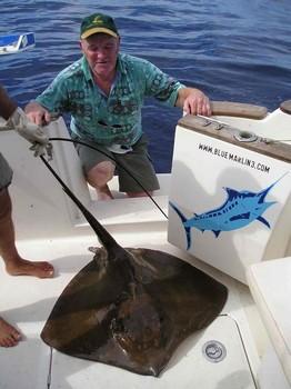 23/11 common stingray Cavalier & Blue Marlin Sport Fishing Gran Canaria
