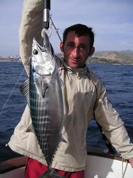 16/01 north atlantic bonito Cavalier & Blue Marlin Sport Fishing Gran Canaria
